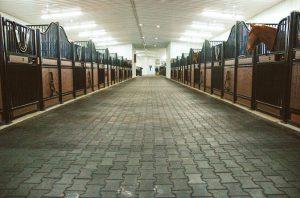 stall22_lg