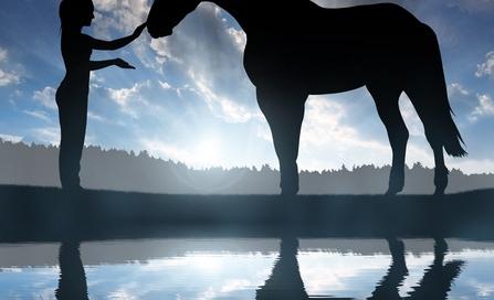 leasing a horse farm