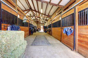beautiful barn interior horse stalls