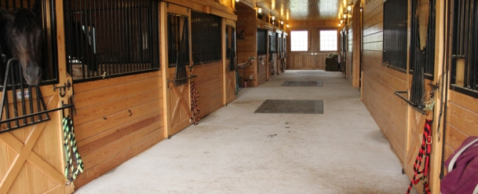 horse barn stables