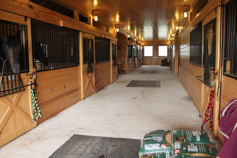 11 Horse Lovers Share Wisdom On Building A Barn
