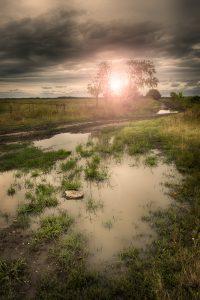 Mud Rash