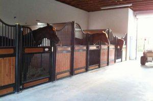 best horse stalls yoke gate