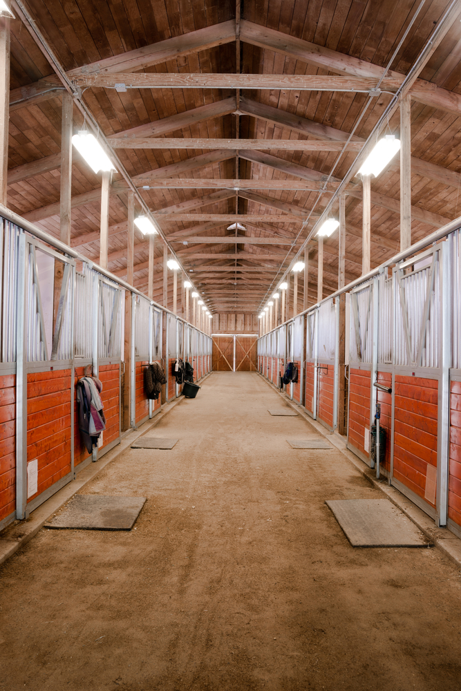 Best Horse Barn Lighting