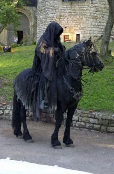 Lord of the Rings Horse