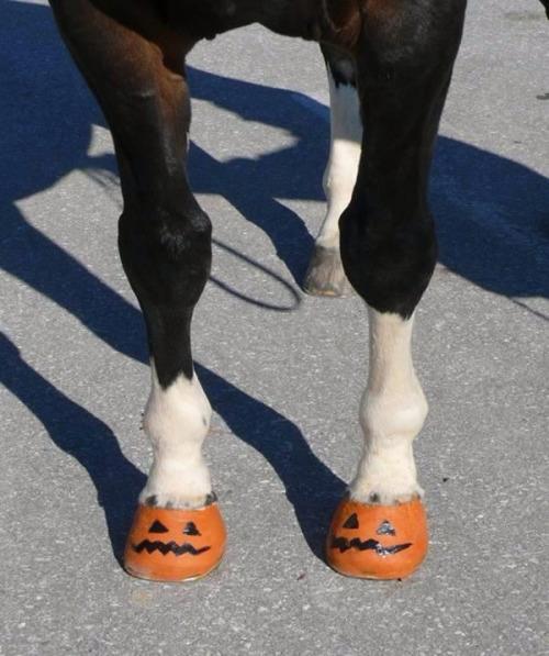 Easy Horse Halloween Costume