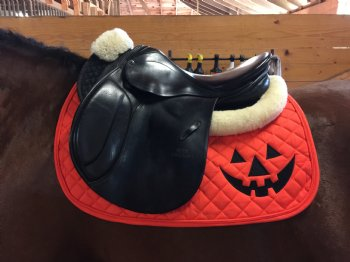 easy English horse Halloween Costume Idea