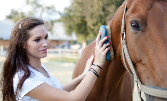 7 Tasty Treats for Your Horse
