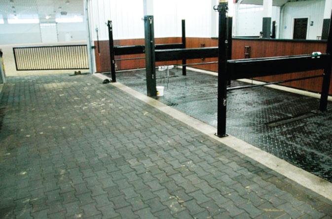 Grooming Stations Saratoga Stalls European Horse Stalls