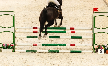 North American Horse Shows